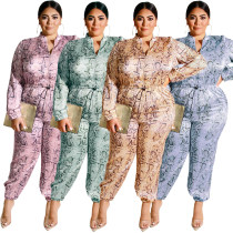 Dressy Jumpsuit Plus Size And Rompers Women 19376