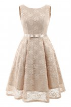 Pure Lace O-Neck Sleeveless A-Line Dress