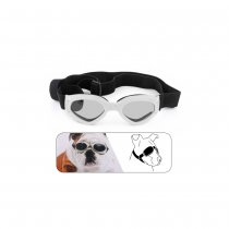 Dog Goggles 180 Degree Foldable Padded Adjustable Elastic Strap UV Plastic Lens