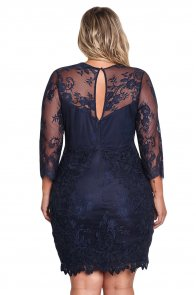 Blue Plus Size Floral Lace Embroidered Dress