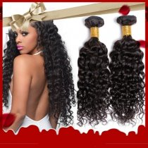 Best Price Brazilian Curly Virgin Hair 2pcs