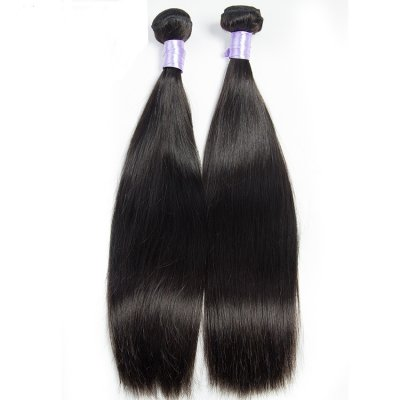 2pc Brazilian Silky Straight Virgin Hair