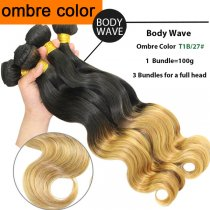 OMBRE HAIR BODY WAVE T1B/27#