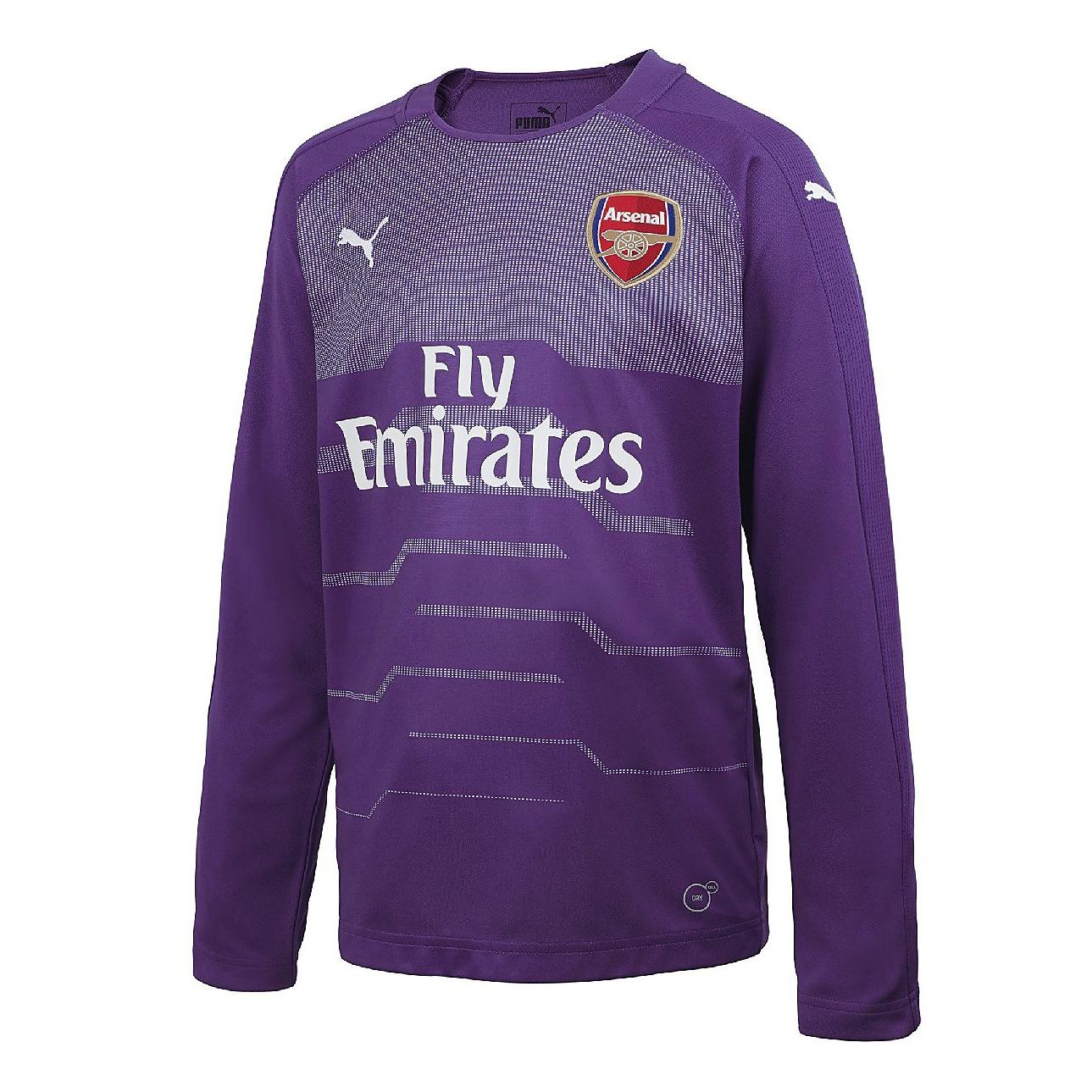 sports shoes cf3b1 68fe0 Arsenal Goalkeeper Purple Jersey Long Sleeve Men's 2018/19