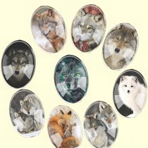 Glass Mix Size Oval Mixed Wolves Wolf l Flatback Cameo Cabochon