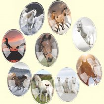 Glass Mix Size Oval Mixed Horses Flatback Cameo Cabochon