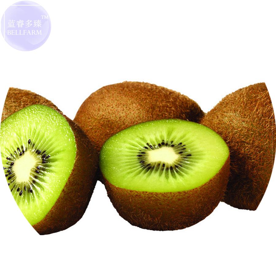 100 seed Sweet Succulent Plants fruit seeds Kiwi Rare yellow Kiwi Seeds