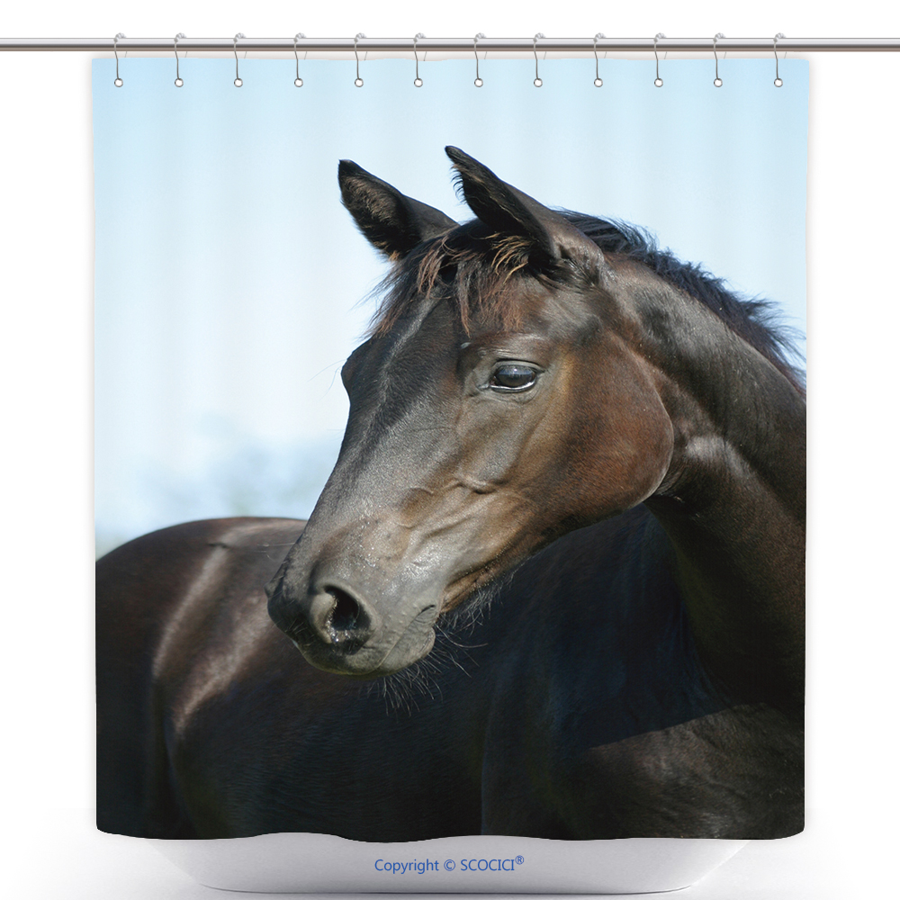 US$ 29.86 - Waterproof Shower Curtain Young Stallion 3009852 ...