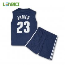 Lenrick Boy's Cleveland Cavaliers LeBron James  Navy Player Swingman Jersey Wholesale