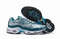 wholesale Nike Air Max TN plus shoes free shipping .009