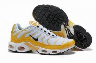 wholesale Nike Air Max TN plus shoes free shipping .016