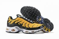 wholesale Nike Air Max TN plus shoes free shipping .006