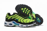 wholesale Nike Air Max TN plus shoes free shipping .012