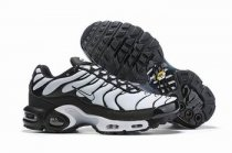 wholesale Nike Air Max TN plus shoes free shipping .011