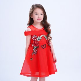 Fashion embroidery girl dress