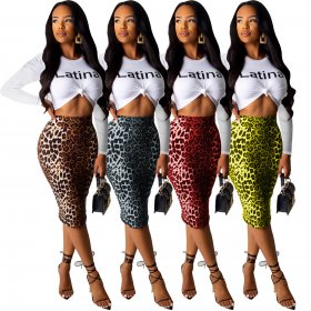 Two sets of autumn multi-color Leopard Print
