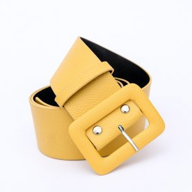 Wide-waisted decorative belt for ladies