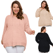 Plus Size Sweater Hoodie 3176