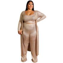Plus Size 3 Piece Suits For Women 19390