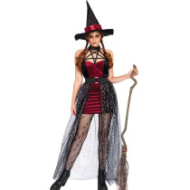Sexy Witch Costume 9028