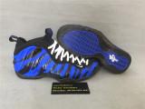 Authentic Nike Air Foamposite Blue