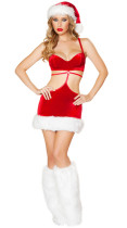 Santa's Beauty Costume 14884