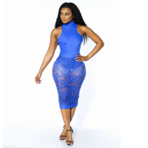 Floral Lace Blue Bodycon Dress  21153
