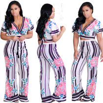 Print V Neck Cap Sleeve Top and Long Loose Pants Set 24588