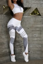 Rayures grises Legging Fitness Running Blanc 25474-2