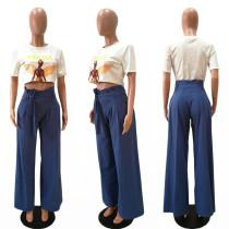 Loose Cut High Waist Sheer Trousers 27302-2