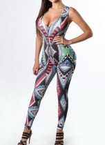 Sexy Plung Print Overall