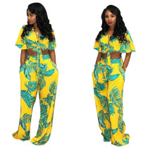 Printed Crop Tie Front Top and Soft Wide Pants