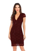 V-Neck Lace Party Dress with Cap Sleeves