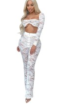 White Lace Sexy Top and Pants Set