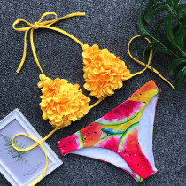 Two-Piece Print Flower Swimwear