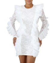 Lace Long Sleeve Detailed Party Dress