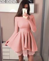 Long Sleeves Pleated Skater Dress