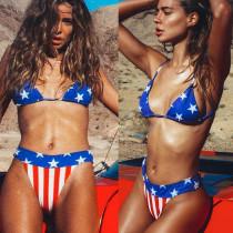 アメリカ国旗ツーピース水着