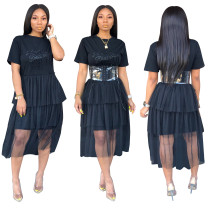 Stylish Applique Long Mesh Dress