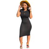 Short Sleeves Sheer Bodycon Dress