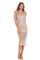 Sequins Elegant Long Scoop Party Dress