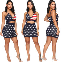 American Flag Bra Top and Mini Skirt