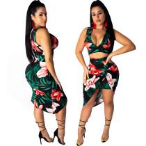 Imprimir Sexy Plung Crop Top y Falda irregular