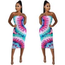 Print Colorful Strapless Midi Dress