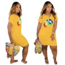 Print V-Neck Shirt Dress