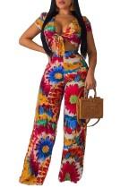 Imprimir Floral Top Crop e cintura alta Calças