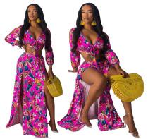 Imprimir Floral Top Crop e Slit Maxi Skirt