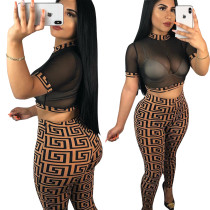 Sexy Print Mesh Crop Top und Leggings
