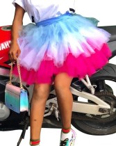Stylish Colorful Mesh Tutu Skirt