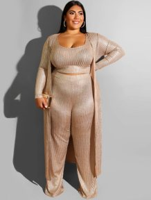 Plus Size Metallic Three Piece Pants Suit